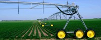Low Maintenance Costs with T-L Pivot Irrigation
